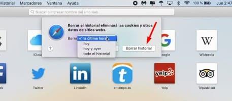 Savefrom PC navegador Safari